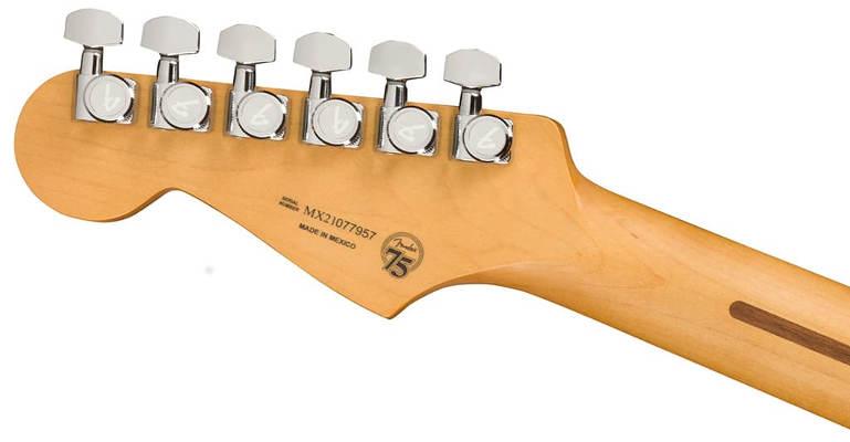Fender Plus